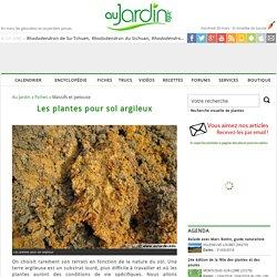 Les plantes pour sol argileux