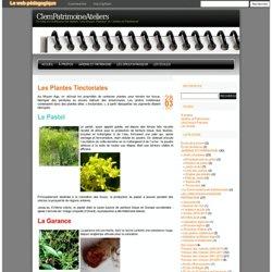 ClemPatrimoineAteliers » Les Plantes Tinctoriales