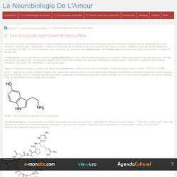 A. Les principals hormones et leurs effets - La Neurobiologie De L'Amour