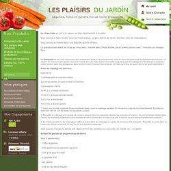 Les recettes de nos légumes