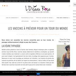 Les vaccins à prévoir pour un tour du monde