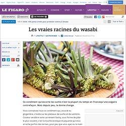 Les vraies racines du wasabi