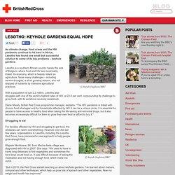 Lesotho: keyhole gardens equal hope