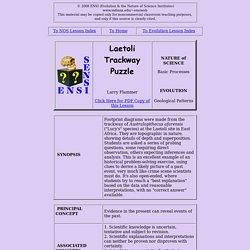 Lesson: Laetoli Trackway Puzzle