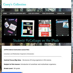 Lesson Plan - Casey's Collection