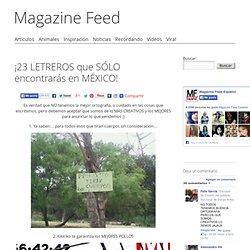 ¡23 LETREROS que SÓLO encontrarás en MÉXICO!