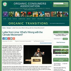 Letter from Lima: What's Wrong with the Climate Movement?