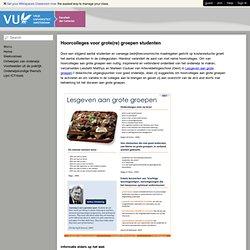 ICT in het letterenonderwijs van de VU - Hoorcolleges voor grote groepen