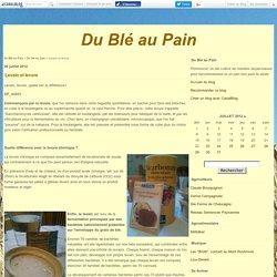 Levain et levure - Du Blé au Pain