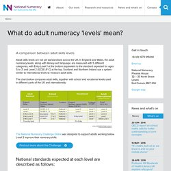 What do 'levels' mean in assessing adults' numeracy skills?