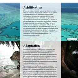 Lexique: 21 mots pour comprendre la COP21
