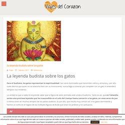 La leyenda budista sobre los gatos - Viajes d