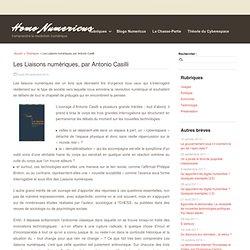 Les Liaisons numériques, par Antonio Casilli