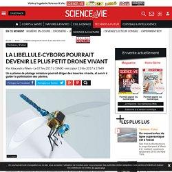La libellule-cyborg pourrait devenir le plus petit drone vivant - Science-et-vie.com