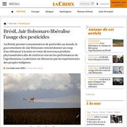 AFP 11/04/19 Brésil, Jair Bolsonaro libéralise l'usage des pesticides
