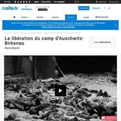 La libération du camp d'Auschwitz-Birkenau - lesite.tv