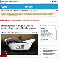 Libérez le dauphin Lucille : manif le 6 juin contre Planète sauvage