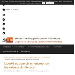 Liberté et pouvoir en entreprise, les raisons du divorce