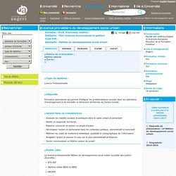 Licence pro Métiers du développement social urbain
