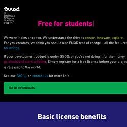 Licensing - FMOD