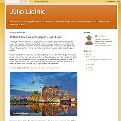 Julio Licinio: 10 Best Attractions in Singapore – Julio Licinio