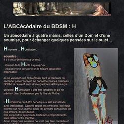 Liens-Secrets Vivre une relation BDSM