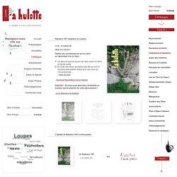 le Lierre - Numéro 107 - Le Petit Catalogue - La Hulotte