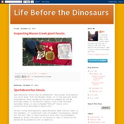 Life Before the Dinosaurs