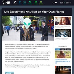 Life Experiment: An Alien on Your Own Planet