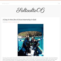 A Day in the Life of Dive Internship in Bali