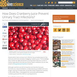 How Does Cranberry Juice Prevent Urinary Tract Infections? | Cranberry Juice's Mysterious Powers | Life's Little Mysteries