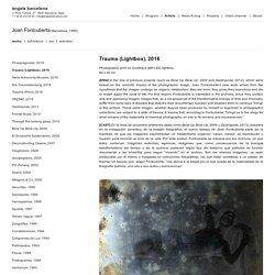 Trauma (Lightbox) / Joan Fontcuberta / Projects / àngels barcelona