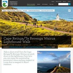 Cape Reinga/Te Rerenga Wairua Lighthouse Walk: Walking and tramping in Te Paki Recreation Reserve, Cape Reinga (Te Rerenga Wairua)