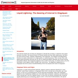 Liquid Lightning:The Meaning of Internal in Xingyiquan - BUDOJAPAN