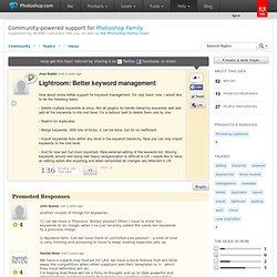 Lightroom: Better keyword management