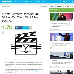 Lights, Camera, Meow! Cat Videos Get Their First Film Festival