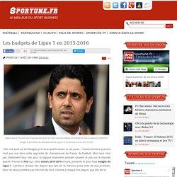 Ligue 1 2015-2016: Les budgets de toutes les équipes
