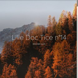Lille Doc Tice n°14