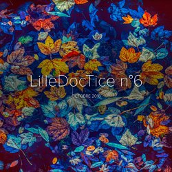 LilleDocTice n°6
