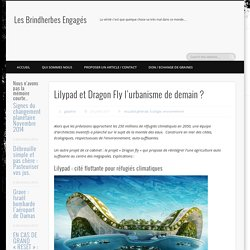 Lilypad et Dragon Fly l'urbanisme de demain ?