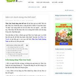 Nấm Lim Xanh dùng như thế nào? Hướng dẫn từ Chuyên Gia