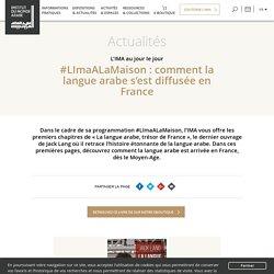 #LImaALaMaison : comment la langue arabe s'est diffusée en France : premiers chapitres du livre de Jack Lang