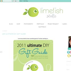 2011 Ultimate DIY Gift Guide