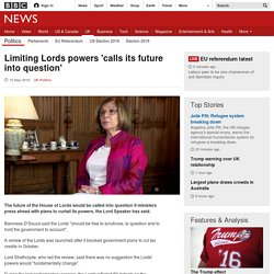 Limiting Lords powers 'calls its future into question'