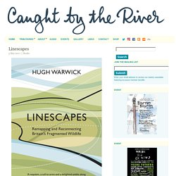*****Linescapes - Caught by the River (ecosystem fragmentation and restoration)