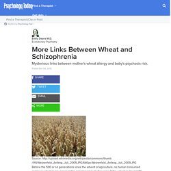 More Links Between Wheat and Schizophrenia