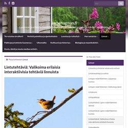 Lintutehtäviä: Valikoima erilaisia interaktiivisia tehtäviä linnuista – aarnehagman.fi