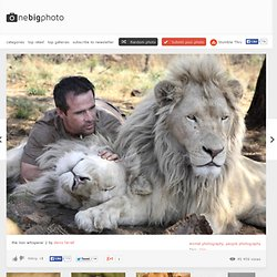 the lion whisperer photo | one big photo - StumbleUpon