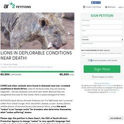 texte de la pétition: LIONS IN DEPLORABLE CONDITIONS NEAR DEATH!