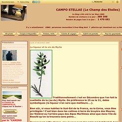 La liqueur et le vin de Myrte - Campo Stellae (Le champ des Etoiles)